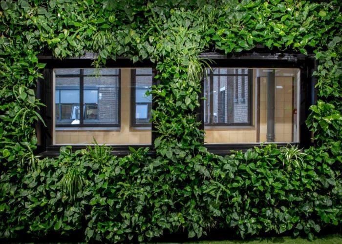 Urban Green Wall