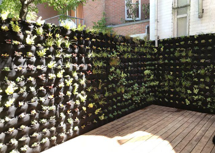 Verticale tuin buiten amsterdam