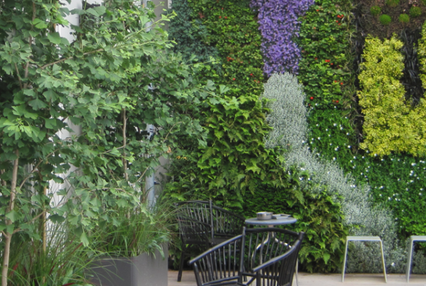 or Green Wall Brouwersgracht