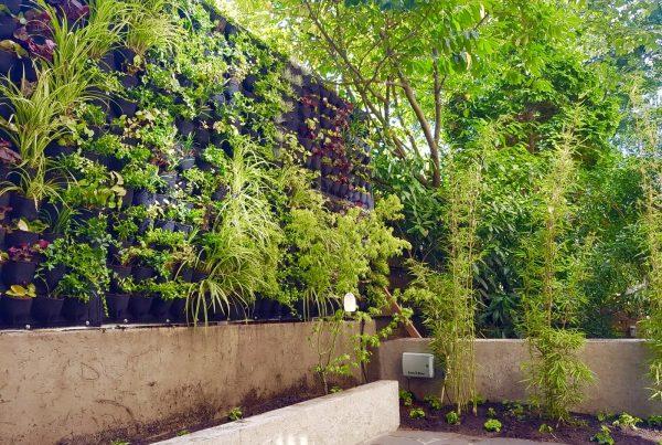 Outdoor Green Wall Amsterdam