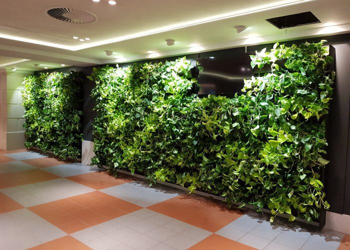 Portfolio Green Wall Cloud Garden