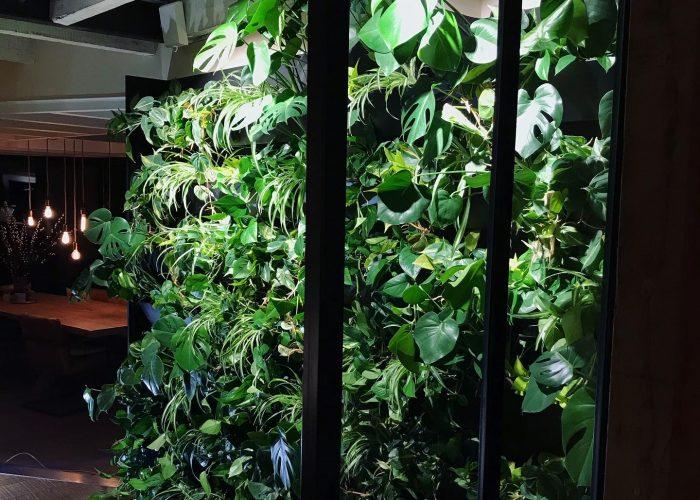 Indoor greenwall Bergen