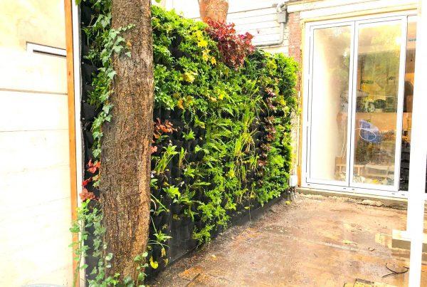 Outdoor Greenwall Geoff Verticale Tuin Buiten 1
