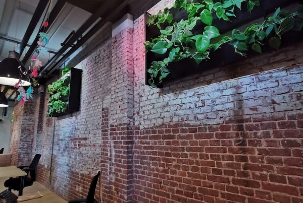 Living Greenwall See Tickets