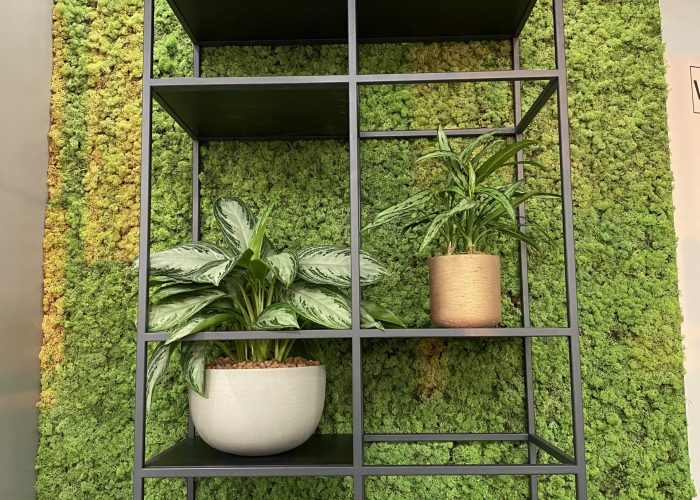 MOSWAND UTRECHT verticale tuinen wand