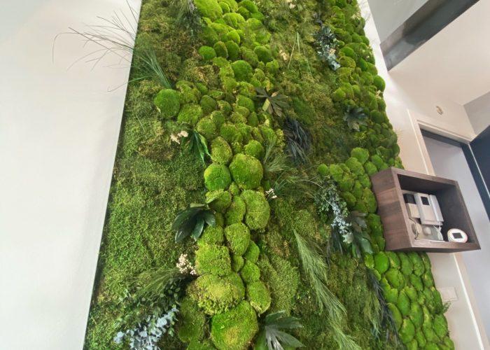 Jungle Moswand- planten Haparandadam-2-